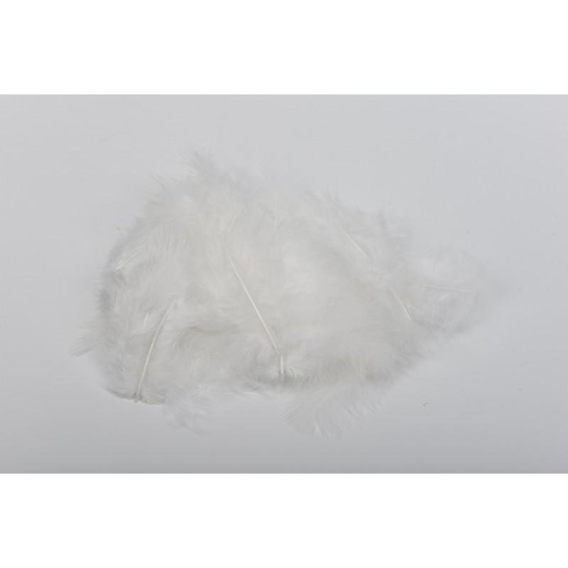 Μεγάλα πούπουλα λευκά