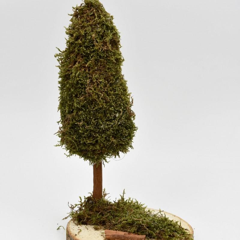 Δεντράκι με βρύα με ξύλινη βάση 35cm