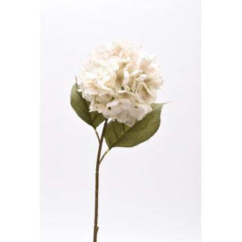 Κλαδί ορτανσία λευκή 30.11.863-10