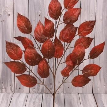 Φθινοπωρινά φυλλώματα