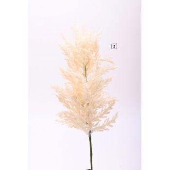 Κλαδί Pampas 70cm