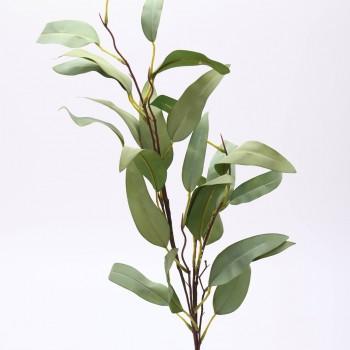 Κλαδί πρασινάδα