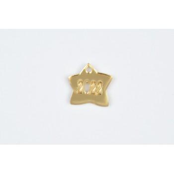 Plexiglass χρυσό αστέρι 2022 3cm 20τμχ
